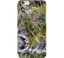 I Thought It was A Painting -  iPhone Case/Skin