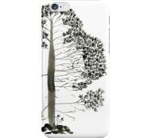 Single Pine, a symbol of longevity iPhone Case/Skin