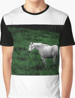A Horse With No Name Graphic T-Shirt