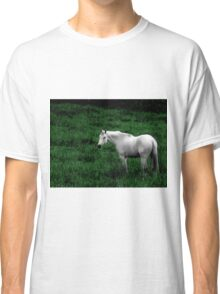A Horse With No Name Classic T-Shirt