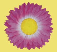 Pink and Yellow Daisy Baby Tee