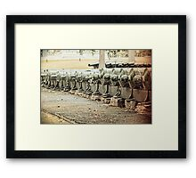 Freedom Reality Framed Print