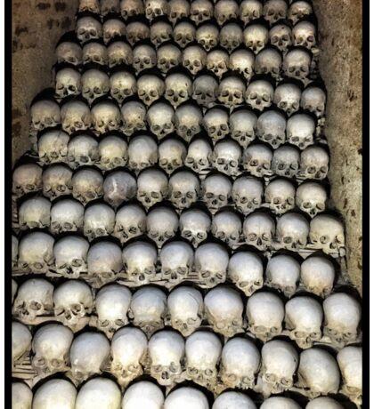 Skulls from Brno Sticker