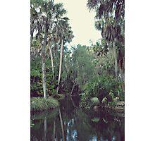 Jungle Waters Photographic Print