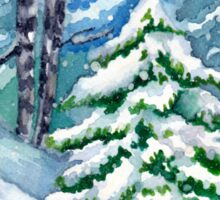 Winter Spruce Tree Sticker