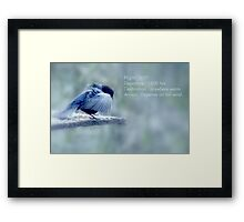 Preparing for take off... Framed Print