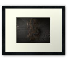 Caught in a Spider's Web Framed Print
