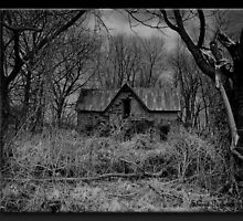 Abandoned by Sheryl Gerhard