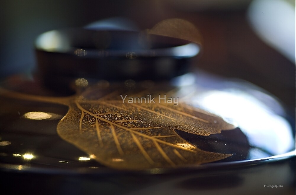 Lacquered bowl and cover - Japan by Yannik Hay