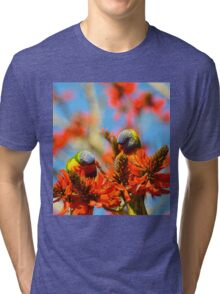 A Pair Of Rainbow Lorikeets Tri-blend T-Shirt