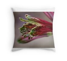 Small red flower starting to open Leith Park Victoria 20151212 6456   Throw Pillow