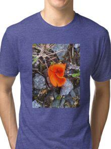 A Burst Of Colour Tri-blend T-Shirt