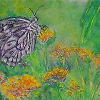 Spring Butterfly (Pastel) by Niki Hilsabeck