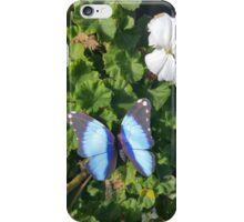 blue butterfly iPhone Case/Skin