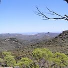 View from the High Tops, (1) Warrumbungle Nat. Park. N.S.W. by Rita Blom