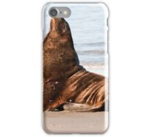 New Zealand Sea Lion 1 iPhone Case/Skin