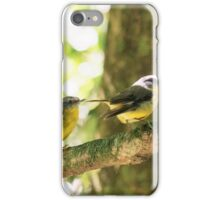 2 Eastern Yellow Robins iPhone Case/Skin