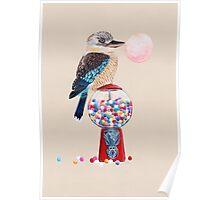 Bird gumball machine Kookaburra Poster