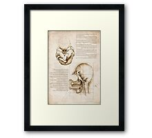 Study of the Simpsons Framed Print