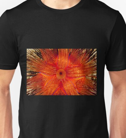 Rainbow Fire Urchin, Wakatobi National Park, Indonesia Unisex T-Shirt