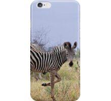 Zebra Foal iPhone Case/Skin