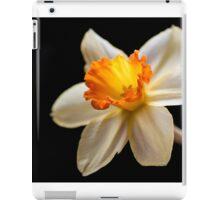Plain and Pretty iPad Case/Skin