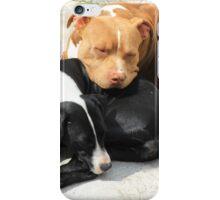 Sleeping Dogs iPhone Case/Skin