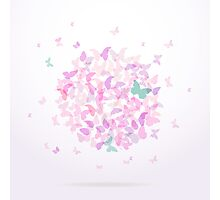 Colorful pink butterflies Photographic Print