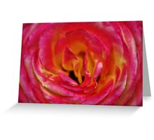 Precious Rose Greeting Card