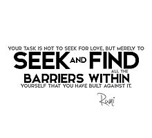 seek and find barriers within - rumi Photographic Print