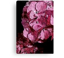 "Hydrangea ""Water Color Touch"" Series Canvas Print"