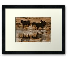 Herd of Horses on a Cold Morning Framed Print