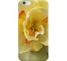Daffodil's Galore  iPhone Case/Skin