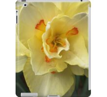 Yellow Orange Daffodil  If you like, please purchase, try a cell phone cover thanks iPad Case/Skin
