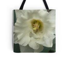 Snow Daffodil's  Tote Bag