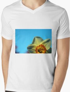 Peek-a-Boo Mens V-Neck T-Shirt
