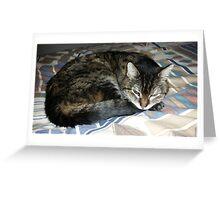 RIP Zoe the Wondercat Greeting Card