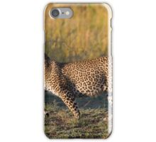 Leopard - Africa iPhone Case/Skin