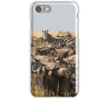 Odd One Out - Africa iPhone Case/Skin