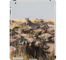 Odd One Out - Africa iPad Case/Skin
