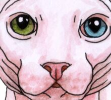 Sphynx cat portrait Sticker