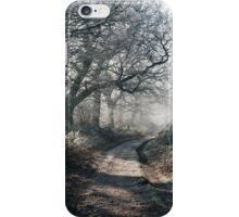 Rays of sunlight on a frost covered track through misty woodland. Norfolk, UK. iPhone Case/Skin
