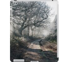 Rays of sunlight on a frost covered track through misty woodland. Norfolk, UK. iPad Case/Skin