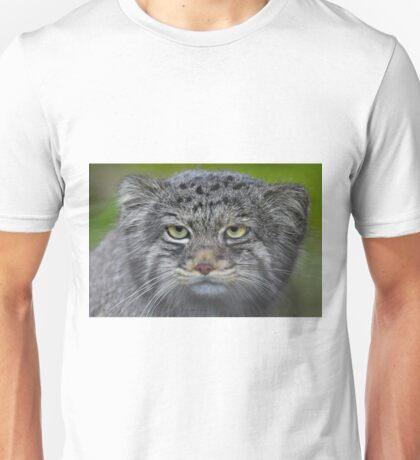 ...careful .. a wild cat... T-Shirt