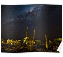 Milky Way - Madagascar Poster