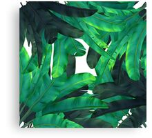 tropic green  Canvas Print