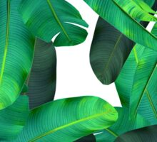 tropic green  Sticker