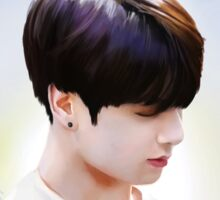 Jungkook - Dreams Sticker
