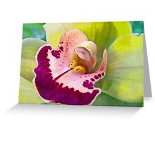 Sensuality of Love Greeting Card