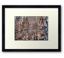 TH57 Framed Print